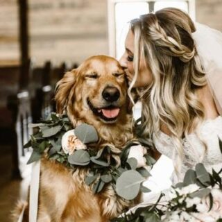 Bride kissing a Dog
