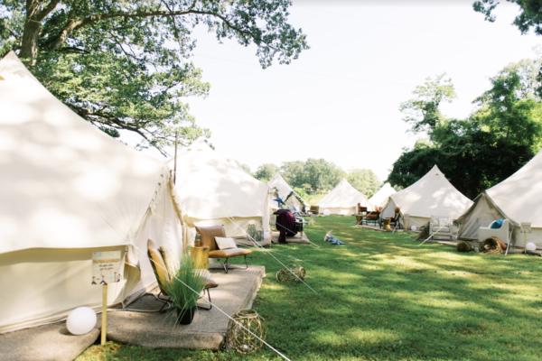 Tents in a field