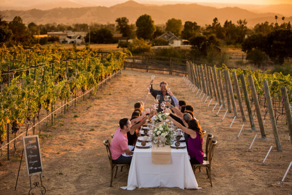 People sitting at a table in a vineyard